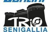 Santini TriO Senigallia: Classifiche e Resoconti di Olimpico e Sprint